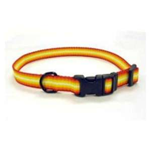 Coastal Pet Trendz Graduated Adjustable Nylon Dog Collar (Orange, 12