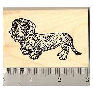 Wire Haired Dachshund Dog Rubber Stamp   Wood Mounted